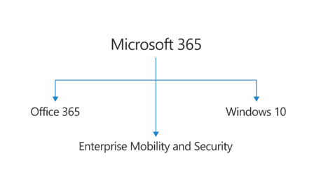 What's in Microsoft 365?